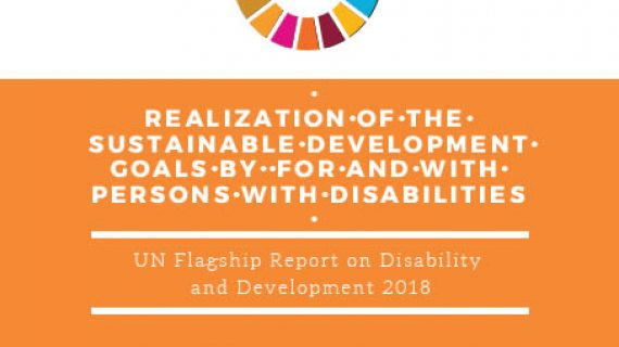 U N Flagship Report Disability and Development 2018